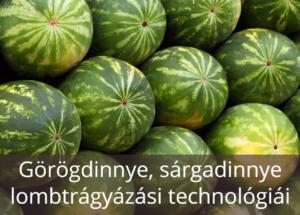 Dinnye lombtrágyázási technológiái
