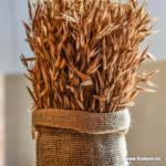 Őszi búza, Árpa lombtrágyázása FitoHorm Turbó termékekkel